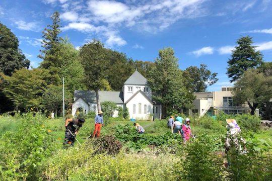 まちの中庭、『滝乃川学園ガーデン』